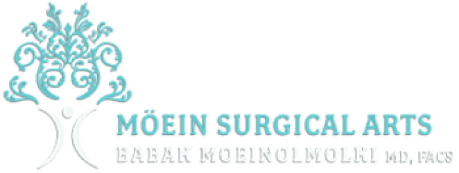 Moein Surgical Arts